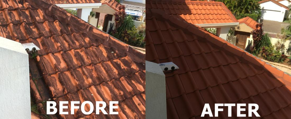 Roof - Before, After
